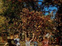 Podzim v V. oddělení školní družiny